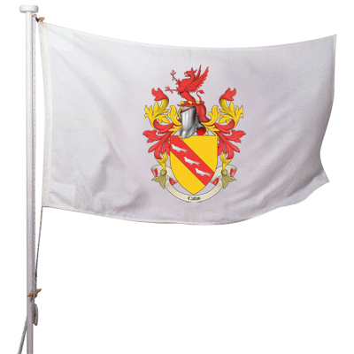 Coat of Arms Flag